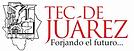 logo-instituto-tecnologico-de-ciudad-jua