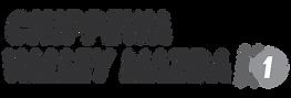 ONE-ChippewaValleyMazda-Logo-Final-01.pn