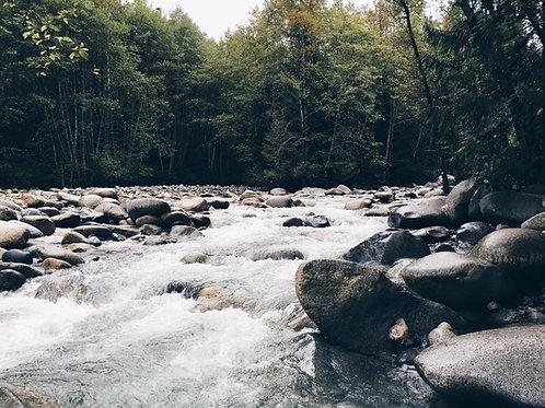 Reka Savinja pri Letušu