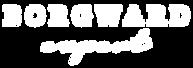 Logo Borgward Expert