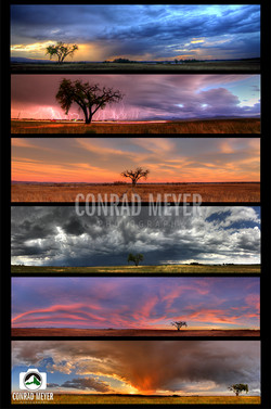 Collection of Panoramas- Lone Tree