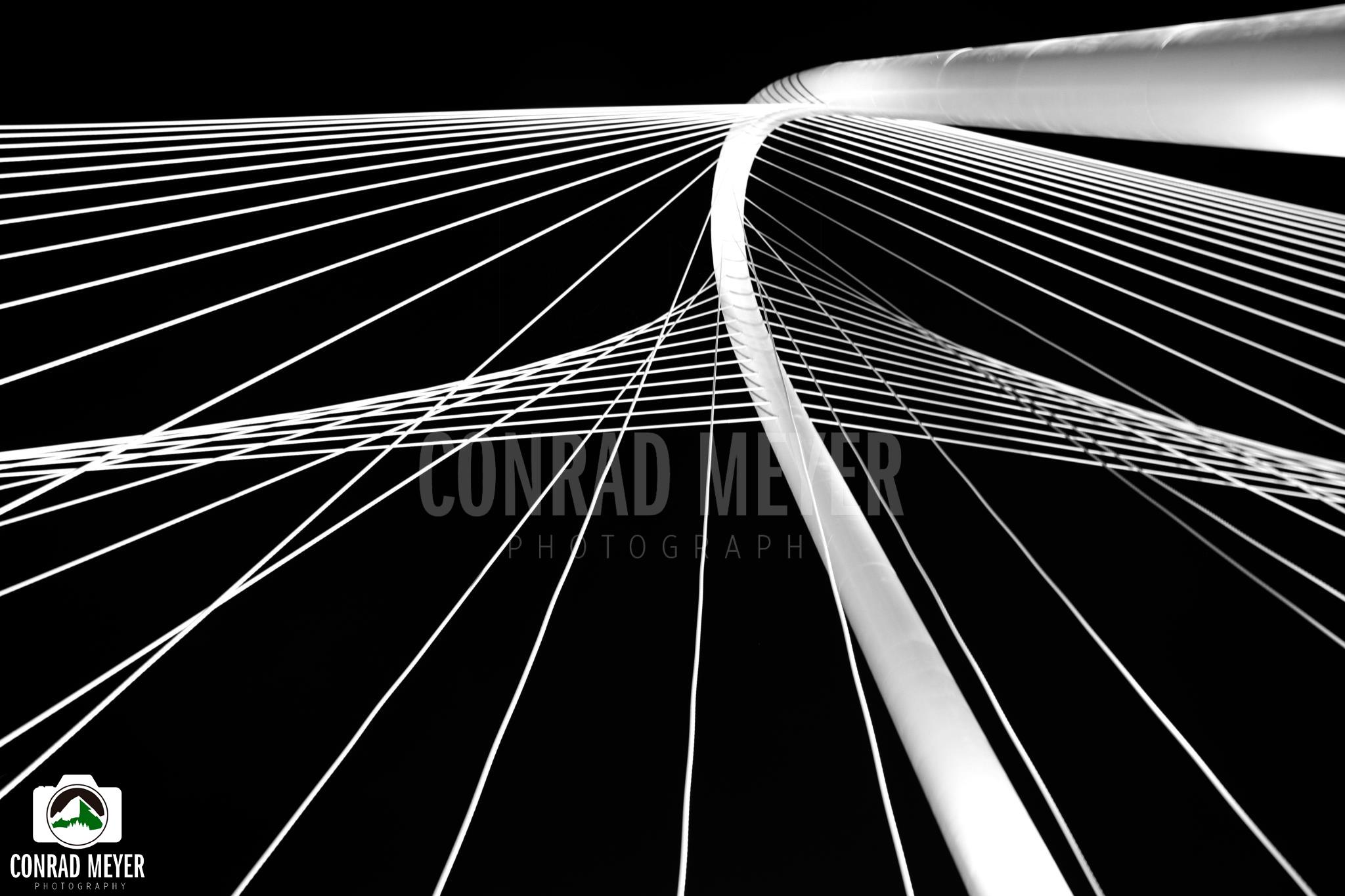 Margaret Hunt Hill Bridge- Dallas Tx
