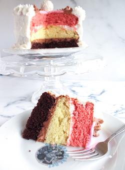 Neopolitan Cake Slice