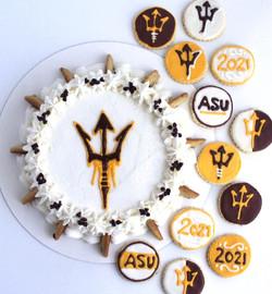 ASU Chocolate Chip Cake