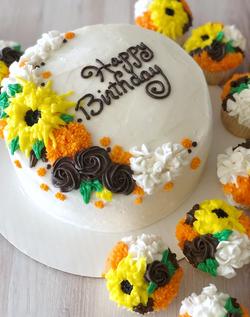 Cake & Cupcake set