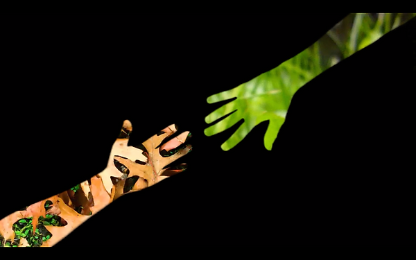 greenscreen 5.png