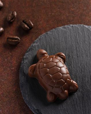 24_C&C Chocolates.SXP.jpg