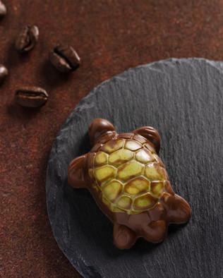 26_C&C Chocolates.SXP.jpg