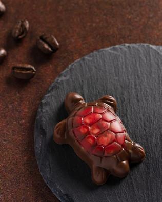 22_C&C Chocolates.SXP.jpg