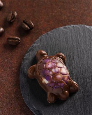 25_C&C Chocolates.SXP.jpg