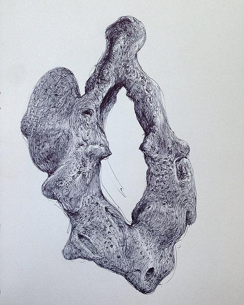Tereza Lochmann, Sea Vaginas I, 2018, stylo bille sur papier.