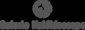 logo-kaleidoscope-1line-dark.png