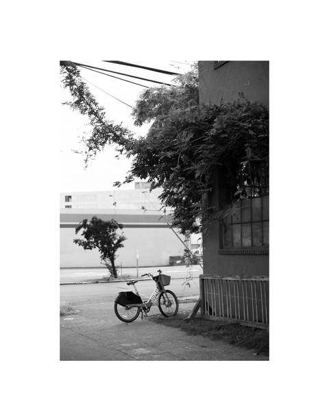 Photo 01_Jump Bike_01.jpg