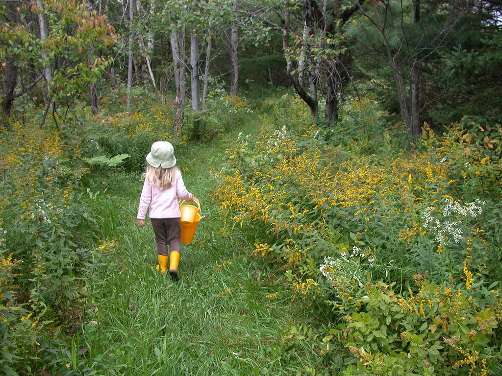 Cornelia Levering Broadmeadows Trail