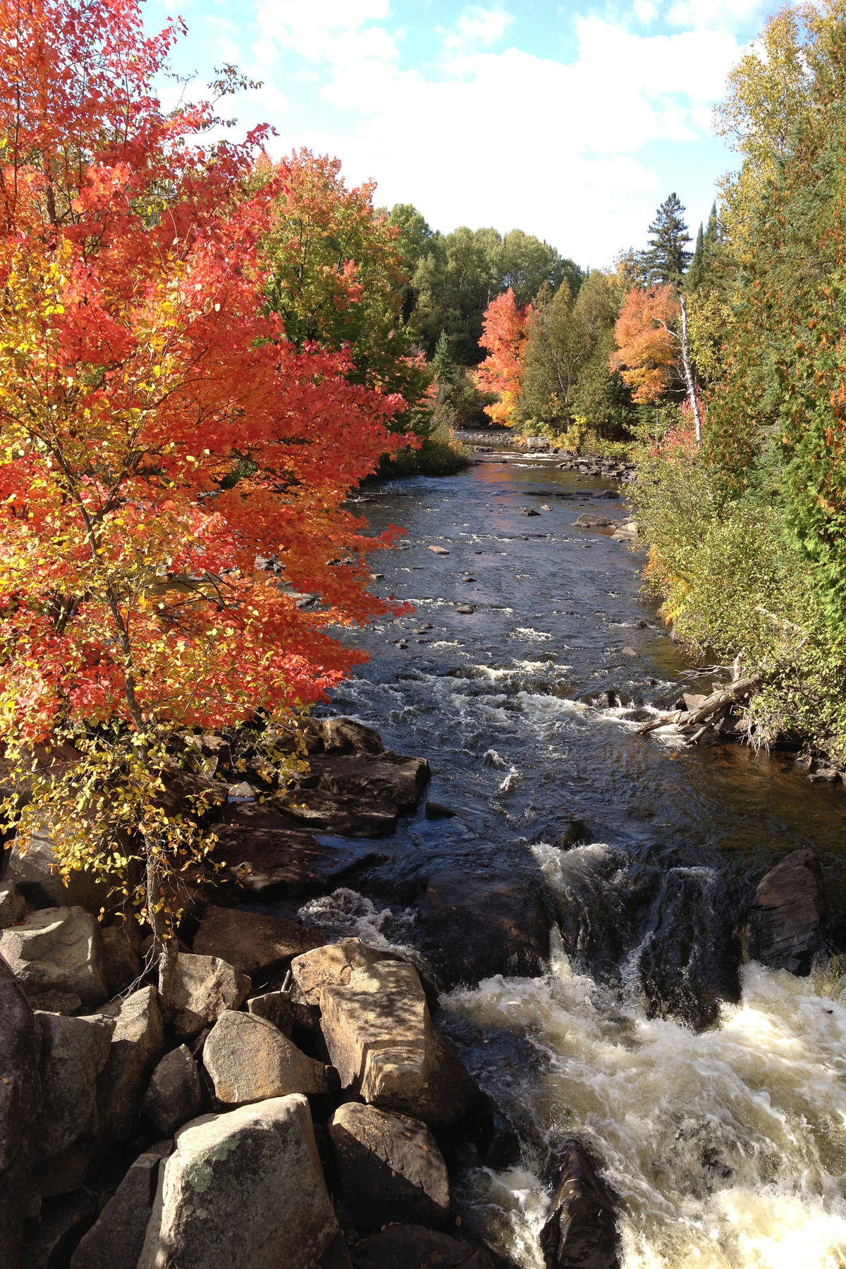 Thompson Rapids