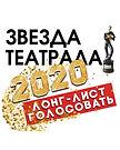 Кнопка-баннер Звезда Театрала 2020.JPG