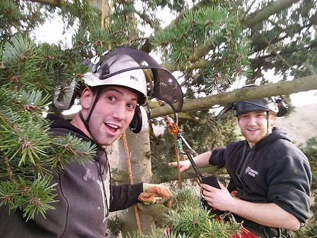Two Timberwolf workers at th top of a tree with protective hats on, smiling at the camera