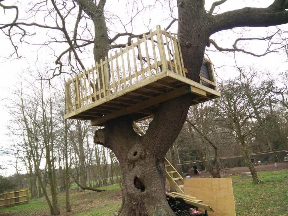 Treehouse 3.jpg