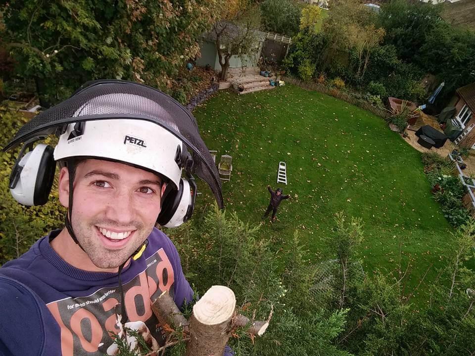Andrew in tree.jpg