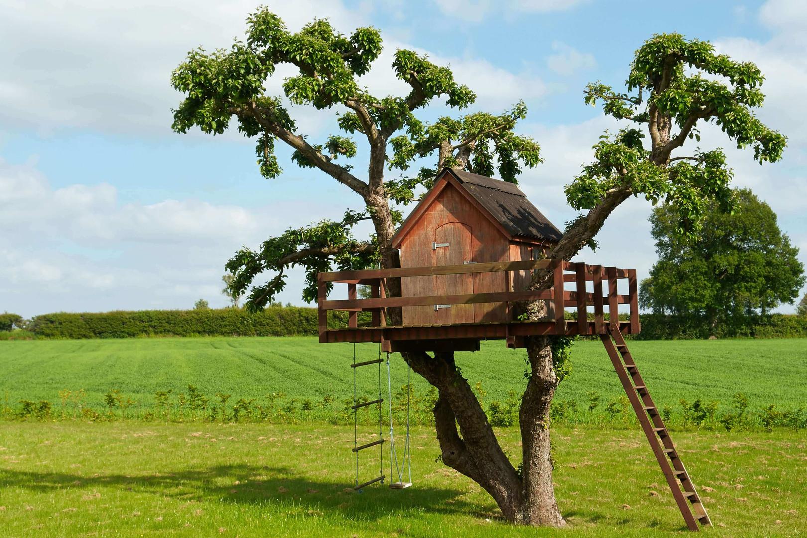 Treehouse in field.jpg