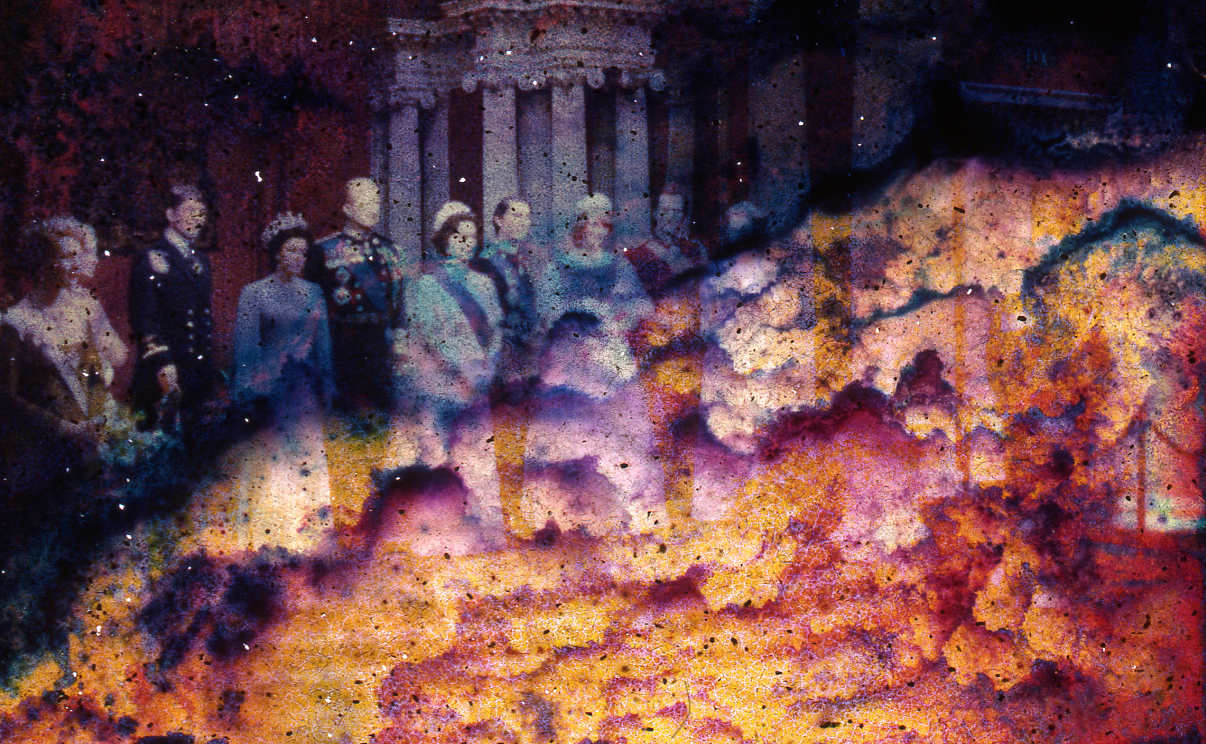 Flaming Royals
