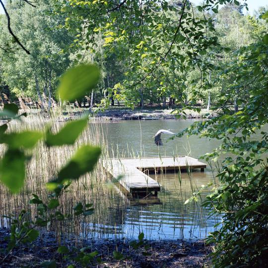 Heron Upper Lake