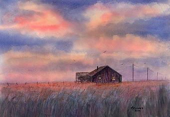 marion_evans_prairie_sunset.jpg