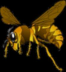hornet-151003_1280.png