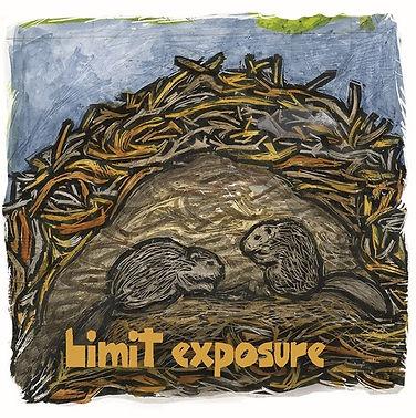 pandemic animals - Limit Beavers 500x503