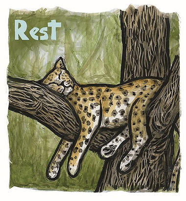 pandemic animals - Rest Leopard 500x540.