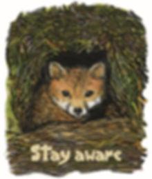 pandemic animals - Aware Fox 500x591.jpg