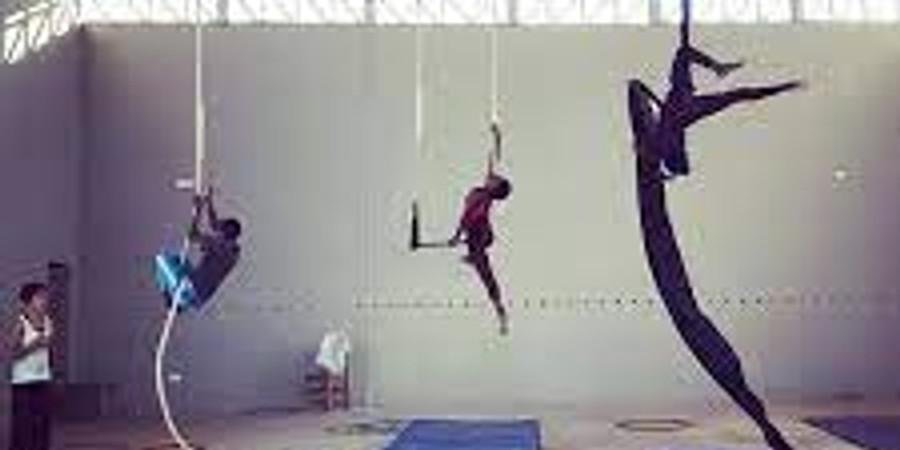 BYOB: Ladies Aerial Class (Coming Soon)
