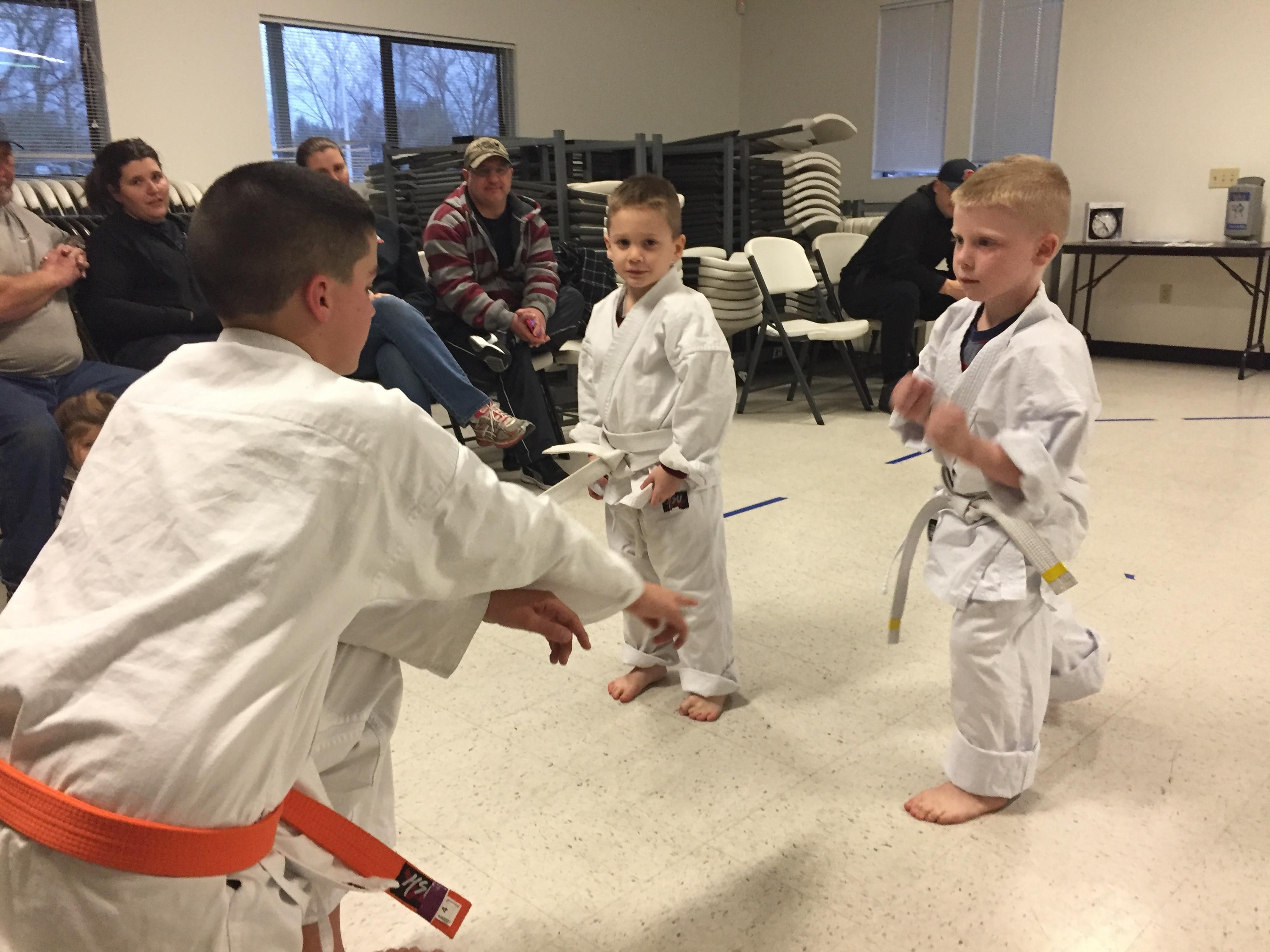 Private Karate Lesson