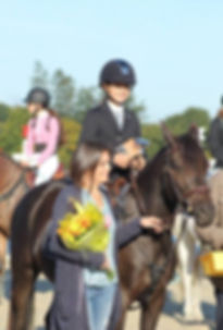 organisation de compétition équestre, commerce de chevaux et coaching
