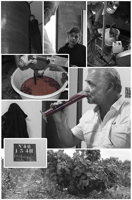 Wijnproeverij Maarssem, wijnworkshop Maarssen