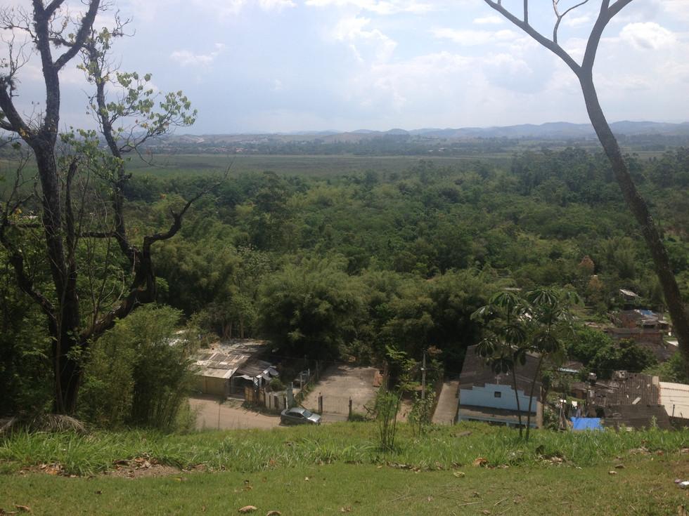 Views to a local park in Sao Jose dos Campos