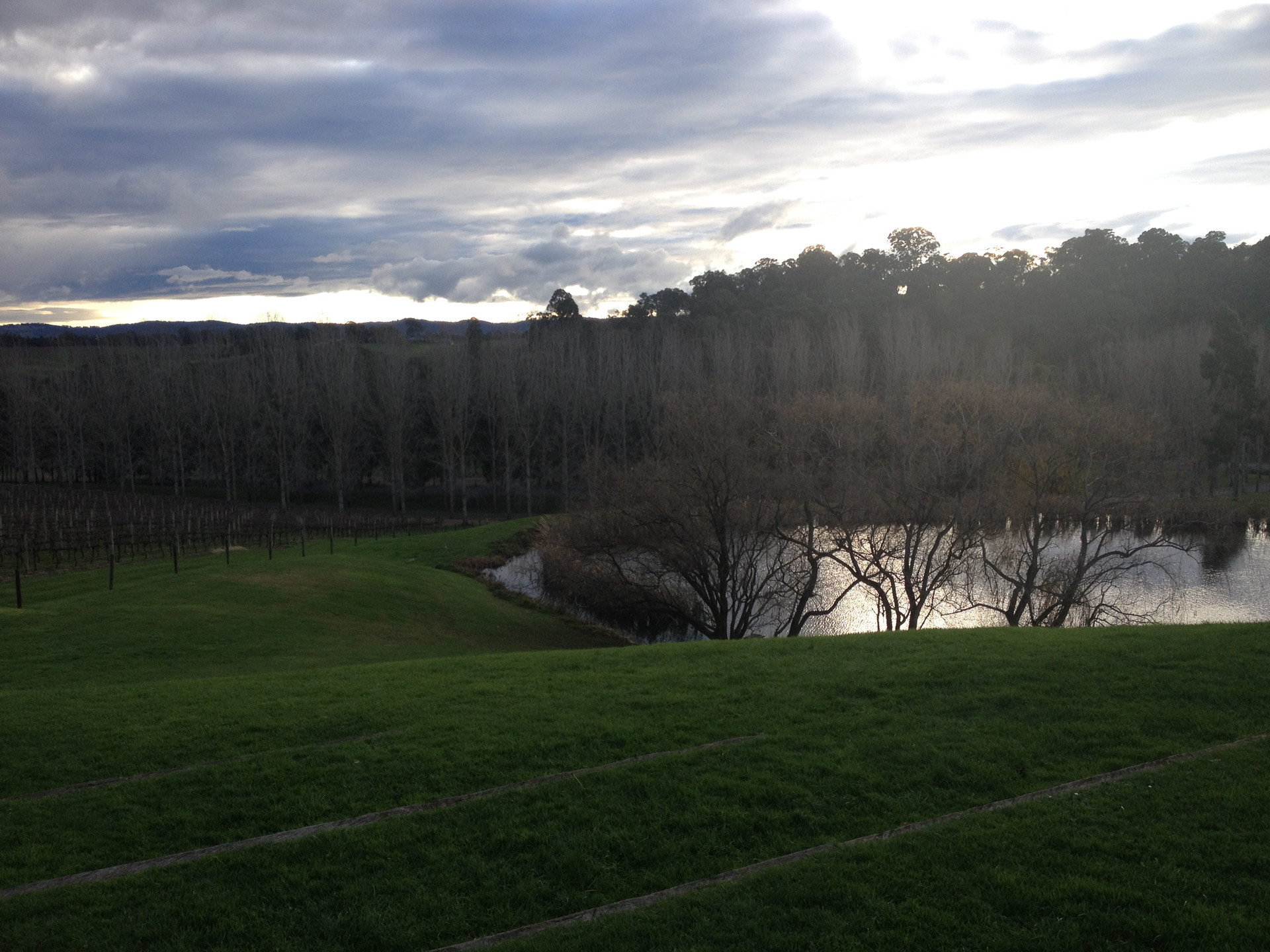 Vineyard reservoir in the Yarra Valley, Victoria