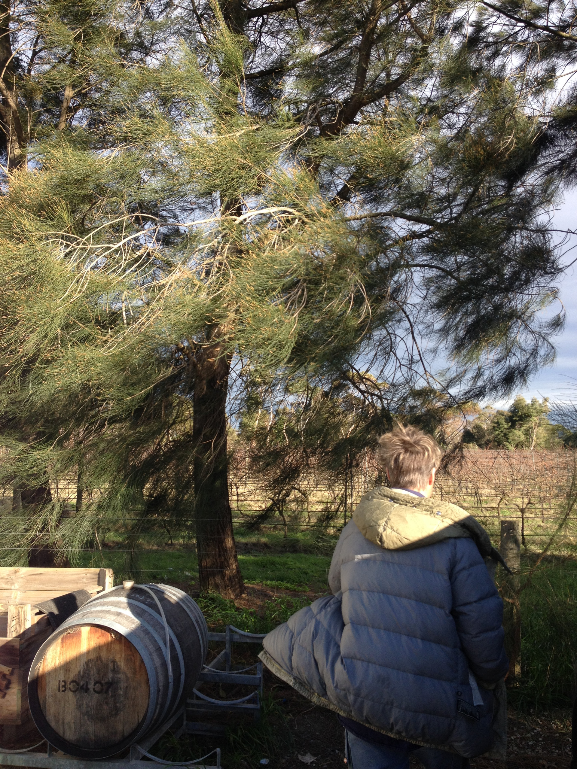 Touring the vineyard with the winemaker and owner on the Mornington Peninsula in Victoria