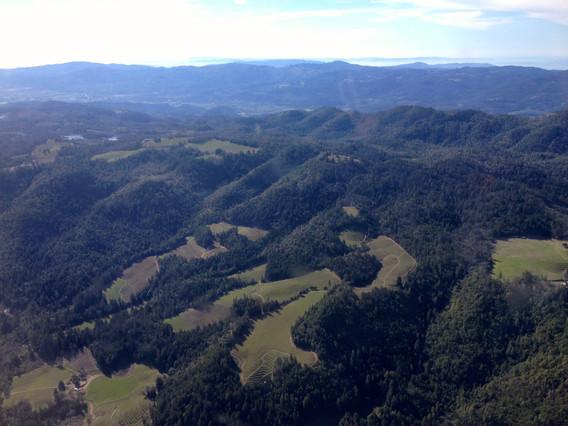 Hillside vineyard developments in Napa County