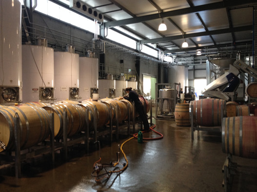 Barrel room- winery tour in Victoria