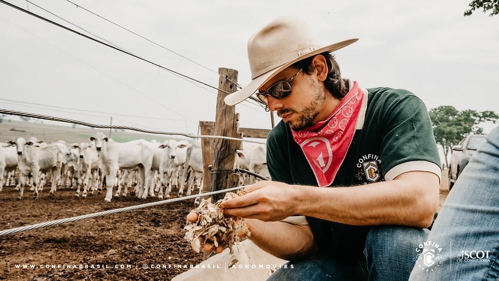 técnico confina brasil analisando alimento no cocho