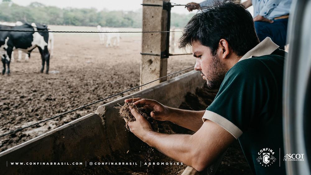 técnico confina brasil analisando alimento no cocho.