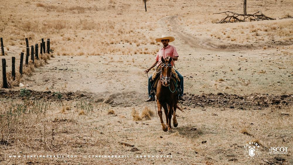 confina brasil. funcionario da fazenda andando à cavalo.