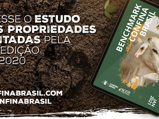 Benchmarking Confina Brasil 2020