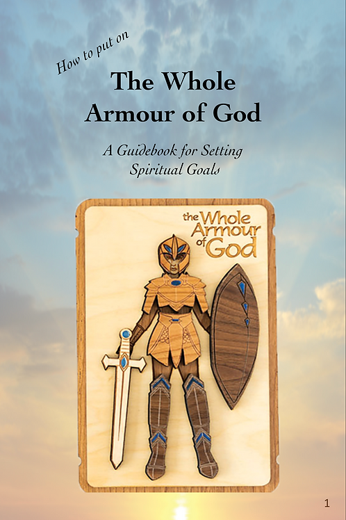 Whole Armour of God printed book for girls