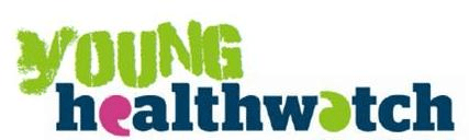 Youth Council meets with Young Healthwatch