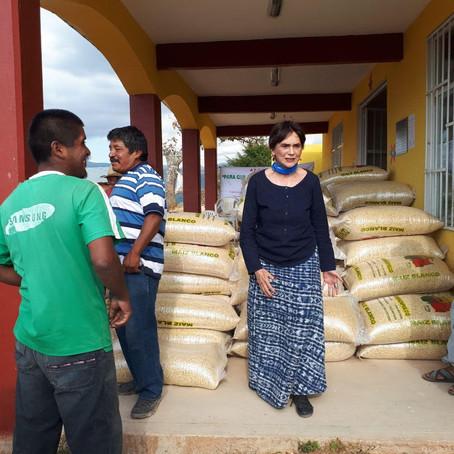 El FISANIM AC (el Fideo) entrega 55 toneladas de maíz para familias indígenas de La Montaña. La Jorn