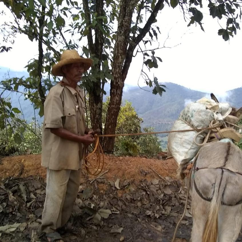 señor_y_burro