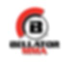 bellator-rectangle.png