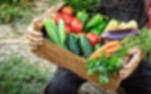 veggies5.jpg